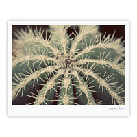 "Angie Turner ""Cactus"" Plant Fine Art Gallery Print"