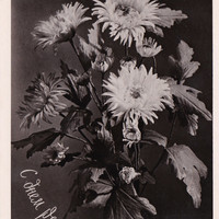 Russian Vintage Postcard (1958/1959) / Real photo postcard RPPC / Happy Birthday Black and White Faux Flowers postcard