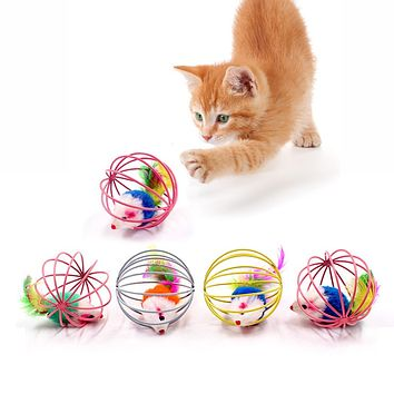 Funny Rolling Mouse Cage Cat Toy 5 pcs set