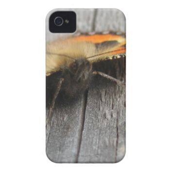 Fluffy Butterfly Macro iPhone 4 Case-Mate Cases