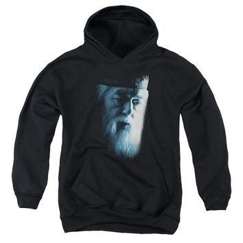 Harry Potter - Dumbledore Face Youth Pull Over Hoodie