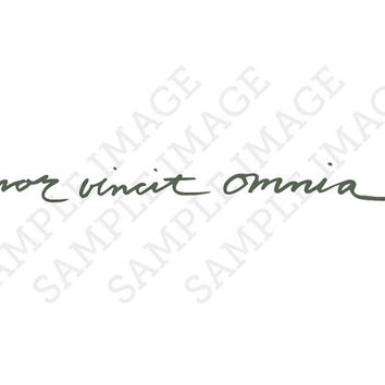 Amor Vincit Omnia Latin Calligraphy Cursive Fake Temporary Tattoos