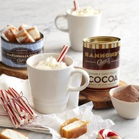 gourmet hammonds hot chocolate set from RedEnvelope.com