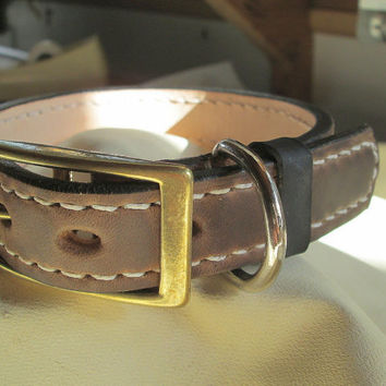 Horween leather dog collar , medium collar , brown leather collar, designer collar , animal jewelry , pet collars , premium leather collar
