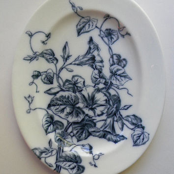 19th Century Botanical Aesthetic Transferware Navy / Dark Blue English Ironstone Transferware Platter Trailing Morning Glory Flow Blue China
