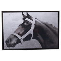 Three Posts 'Fortune's Favorite I' Framed Photographic Print on Canvas