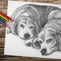 Adult Coloring Page, coloring page, Instant download coloring, Two Dogs coloring book page, Printable coloring page, coloring book for adult