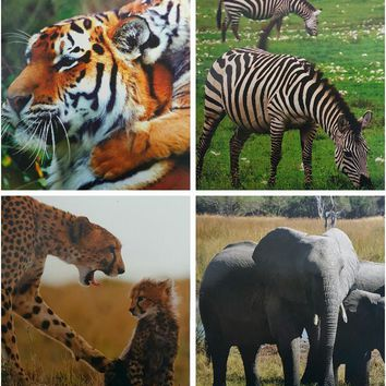 Two Pocket Folders Wild Animals - CASE OF 50