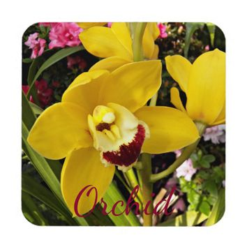 Yellow Boat Orchid Floral Beverage Coaster