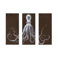 Lord Bodner's Octopus Study Triptych - Store