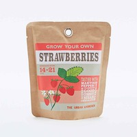 Urban Grow Strawberry Bag - Urban Outfitters