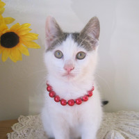 Red Pearl Cat Collar, Dog Collar, Hand Knotted Cat Dog Jewelry Collar with Magnetic Ball Clasp, Valentine Pet Gifts, Wedding Cat Dog Collar