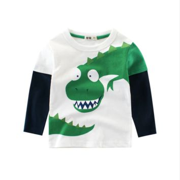 Dinosaur Rawr Long Sleeve Cotton Pullover