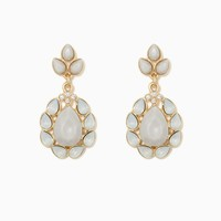 Desi Teardrop Earrings | Fashion Jewelry | charming charlie
