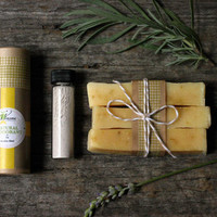 Soap Gift Set / All Natural Deodorant, Tooth Powder, Cold Process Soap / Meadow Blend Deodorant / Toothpaste theteam cabin mustard woodland