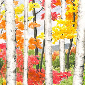 "Autumn Forest Painting, ORIGINAL Fall Landscape Watercolor, Autumn Birch Trees, Fall Color, Orange Leaves, Red, Yellow, Watercolor 8"" X 10"""