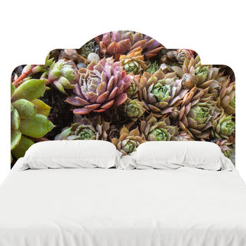 Sweetest Succulents Headboard Decal