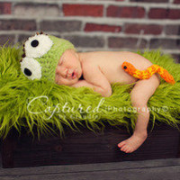 Oscar the Grouch (add his adorable worm friend Slimey!) — Gracie's Garden Designs