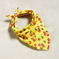 UO Allover Cherry Bandana | Urban Outfitters