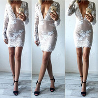 Deep V-Neck Floral Lace Sheer Bodycon Dress