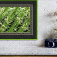 Camo Frog Dragonfly Framed Art