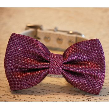 Magenta Bow Tie Dog Collar, Pet Wedding Accessory