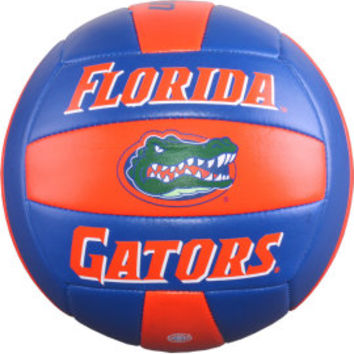 University of Florida Gators Volleyball | University of Florida