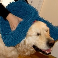 Soggy Doggy - Super Shammy Dog Towel: Royal Blue/Red