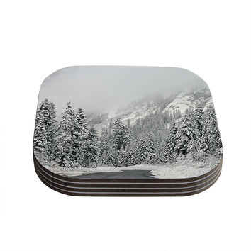 "Robin Dickinson ""Winter Wonderland"" White Gray Coasters (Set of 4)"