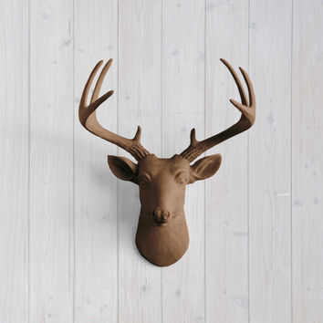 The MINI Virginia Chocolate Brown Faux Taxidermy Resin Deer Head Wall Mount | Chocolate Brown Stag w/ Colored Antlers