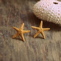 Beach Ear Studs: Seeing Starfish