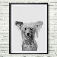 Chinese crested dog Print, Nursery Animal Wall Art, Kids Printable Art, Chinese crested dog Animal Print, Gift Dog Photo Wall Art *121*