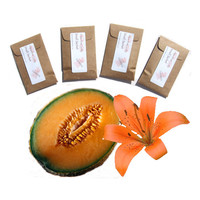 Scented Envelope Sachets 4 Cantaloupe Lily Candle Sachets - DIY Party Favors for Backyard Garden Wedding - Orange Kraft Brown Modern Rustic