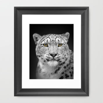 Snow Leopard Framed Art Print by Linsey Williams