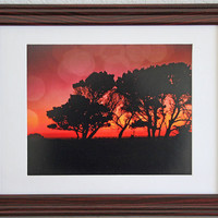 Sunset Trees Photograph, Trees Against Evening Sky at Oregon Coast, Digital Fine Art Photography, Tree Silhouette and Fiery Sky, Photo Print