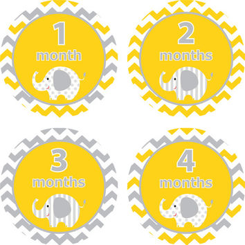 Baby Month Stickers Baby Monthly Stickers Girl Boy Monthly Shirt Stickers Yellow Gray Elephant Shower Gift Photo Prop Baby Milestone Sticker