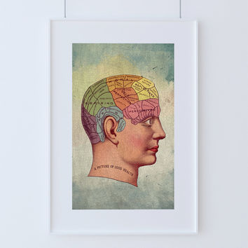Vintage Victorian Medical Brain Anatomy Print Giclee Anatomy Print on Cotton Canvas and Paper Canvas Home Wall Decor