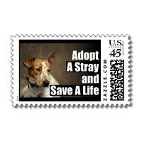 Adopt A Stray Stamp from Zazzle.com