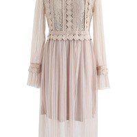 Delicate and Grace Lace Mesh Tulle Dress in Tan