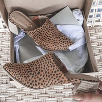 Tip Toe Cheetah Heeled Mules