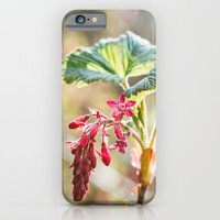 Flowering Currant iPhone & iPod Case by Errne