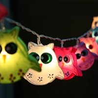 LED Battery Operated Owl Bird Fancy Lantern String Party,Patio,Fairy,Decor,Living Room,Kid Child Bedroom,Christmas,Wedding Lights