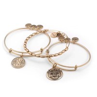 Strength And Power Bangle Stack