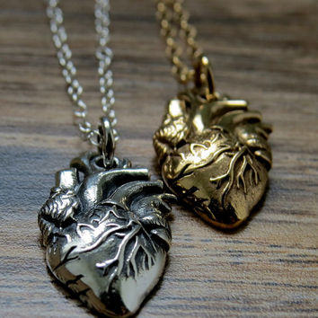 Anatomical Heart Necklace Silver pendant on thin cable link chain