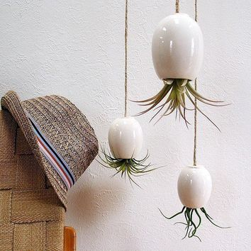 LARGE Hanging Air Plant Pod tm Gorgeous Glossy White by mudpuppy [sold out]