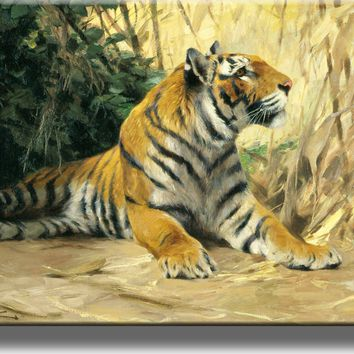 Resting Tiger Painting Picture on Acrylic , Wall Art Décor, Ready to Hang!