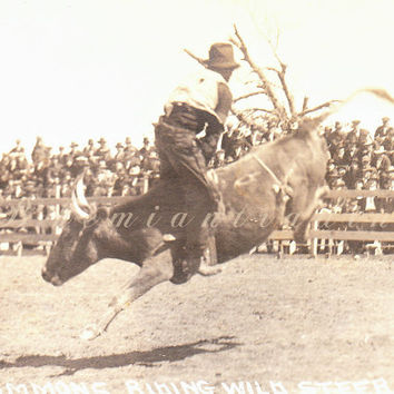 Cowboy Real Photo Postcard. Bud Timmons Riding Steer Backwards. Vintage 1920s Old West Rodeo, AZO RPP, R R Doubleday