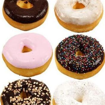 Assorted 6 Pack Fake Donuts - PRDN06