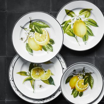 Meyer Lemon Dinnerware Collection