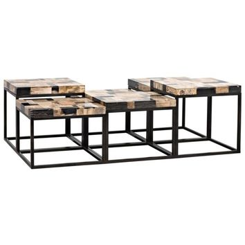 Bayside  Coffee Table, Metal W/ Fossil
